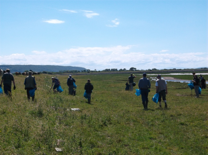 Foreshore Clean up July 2016 (6)